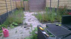 Opruimen van tuinen