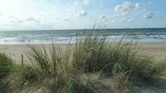 dunes Noordwijk