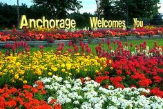Anchorage, Alaska - We saw the welcome as we were driving to the airport to leave. We loved Anchorage and all of Alaska! Moving To Alaska, Alaska Travel, Alaska Cruise, Travel Usa, Alaska Trip, Places To Travel, Places To Visit, Living In Alaska, Anchorage Alaska