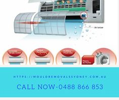 We offer expert mould inspection, removal, and rising damp Sydney. Rising Damp, Air Purifier, Sydney, How To Remove, Cleaning, Ads, Home Cleaning