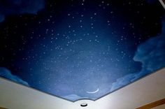 Night Sky Mural for the ceiling!
