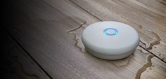 Water Leak Detector: Wireless, No Hub Leak Detection System   Delta Faucet
