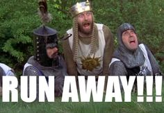 "I think I need to watch this again. It's been too long, and I could use a good laugh! ""RUN AWAY"", Monty Python and the Holy Grail! Lol, Actors, Book Club Books, Running Away, Movie Quotes, Good Movies, Funny Movies, Laugh Out Loud, The Funny"