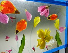 Sticky Window Flower Garden: Petals and contact paper.