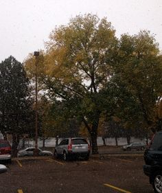 First Fort Collins snow of the season outside the Garlic Knot