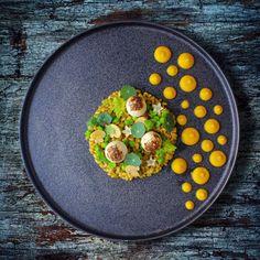 Quail Eggs • Freekah • Mushroom • Peas • Carrot Purée
