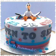 Gender reveal cake / taart om dmv de gekleurde binnenkant het geslacht van de baby aan te geven. Biscuit en meringue creme zijn in de kleur van het geslacht.