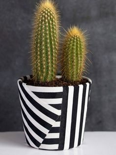 10 Upscale Ways to Make Over Terra-Cotta Pots - Add a little pizzazz to your existing terra-cotta pots thanks to these creative ideas. You can DIY a terra-cotta pot using decoupaged napkins, gold spray paint, fabric, and more.