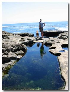 botanical beach, Vancouver Island. I've been here a couple of times <3 it !!!