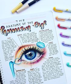 This is a repost by one of our inspiring customer ! Very eye catch… - SCHOOL NOTES Bullet Journal Notes, Bullet Journal School, Bullet Journal Ideas Pages, Nursing School Notes, College Notes, Pretty Notes, Good Notes, Eye Study, Medicine Notes