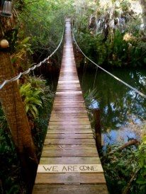 We all take different paths, but we all travel the same bridge of life to death. Spiritual Inspiration, Something Beautiful, Adventure Is Out There, Oh The Places You'll Go, Mother Nature, In This World, Paths, Beautiful Places, Beautiful Forest