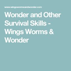 Wonder and Other Survival Skills - Wings Worms & Wonder