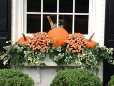 46 Beautiful Fall Planters for Easy Outdoor Fall Decor # and Garden Fall Window Boxes, Window Box Flowers, Christmas Window Boxes, Fall Containers, Succulent Containers, Container Flowers, Container Plants, Container Gardening, Window Planter Boxes