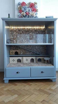 Repurpose your old furniture into a hamster habitat Cage Hamster, Diy Guinea Pig Cage, Hedgehog Cage, Guinea Pig Hutch, Guinea Pig House, Hamster House, Pet Guinea Pigs, Guinea Pig Care, Diy Hedgehog House