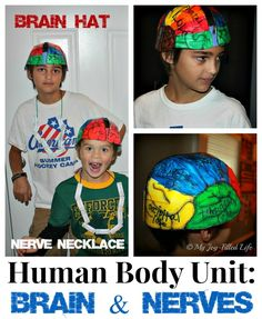 Human Body Unit: Brain & Nerve activities and resources Chintomby Chintomby Avila {My Joy-Filled Life} Human Body Science, Human Body Activities, Human Body Unit, Human Body Systems, Science Activities For Kids, Science Education, Life Science, Science Fair, Teaching Science