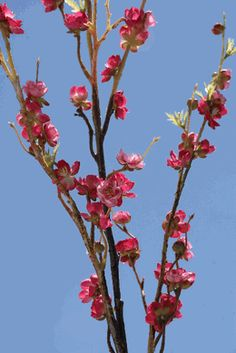 "Silk Cherry Blossom Branches Dark Pink 42"" - Make a bunch for some corner or other?"