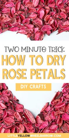 Rose Petals Craft, Dried Rose Petals, Flower Petals, Dried Flowers, Rose Petal Uses, Uses For Rose Petals, Drying Roses, Homemade Tea, Easy Craft Projects