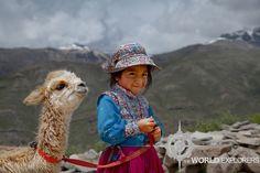 Colca Canyon, Peru Fun Vacations, Cute Alpaca, Alpacas, Colourful Outfits, South America, Peru, Wander, Beautiful People, The Incredibles