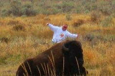 The Wyoming Highway Patrol officer claimed that a distorted image made him look much closer to the resting bison.