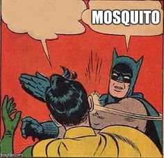 Mosquito | MOSQUITO | image tagged in memes,batman slapping robin | made w/ Imgflip meme maker