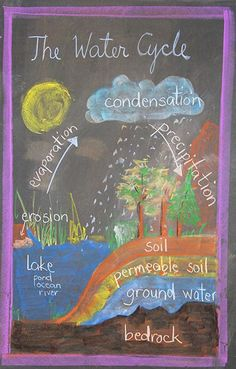 The Waldorf School -> Publications -> Bulletin -> Sunday, September 2014 Teaching Science, Science For Kids, Science Activities, Waldorf Curriculum, Waldorf Education, Chalkboard Drawings, Chalk Drawings, Third Grade Science, Outdoor Learning