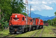 RailPictures.Net Photo: ALL 4103 América Latina Logística EMD G12 at Curitiba, Brazil by Nicolas Mentrasti