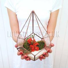 SALE TEARDROP GLASS TERRARIUM, Planter, Geometrical, Pot, Succulent, Air Plant