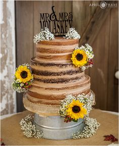 Pretty naked wedding cake from Cakes by Ryann at a real farm wedding with rustic door backdrop in Nebraska. - April O'Hare Photography http://www.apriloharephotography.com