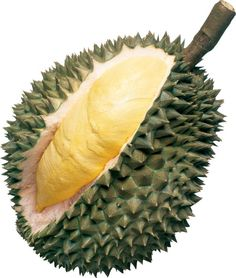 A durian Fruit .It's known for its thorny husk and custard-like flesh. It is extremely popular in Southeast Asia, and is used in both sweet and savory dishes