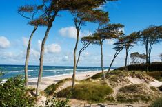 On these pages you will find a complete overview of purely vegetarian or vegan hotels and guest houses worldwide. Places To Travel, Places To See, Nature Spirits, Baltic Sea, Beach Holiday, Sandy Beaches, Germany Travel, Wonders Of The World, Seaside