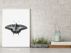 Blue Greyish Butterfly, Instant Download Large Modern Minimalist Nursery Animals Wall Art, Butterfly Photography Prints, Butterflies Decor by ahmoy on Etsy