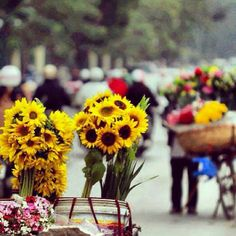 Sunflowers on the streets