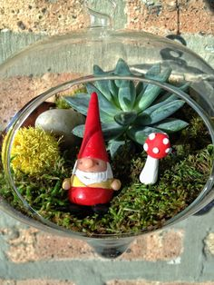 Hanging Gnome and Mushroom Succulent Terrarium by lovelyterrariums, $30.00