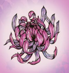 Japanese Chrysanthemum Drawing | Black Chrysanthemum Tattoo Pictures to Pin on Pinterest