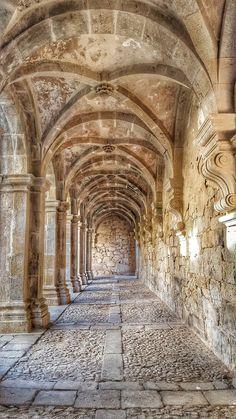O Douro Chama - razões para visitar o Douro em Portugal