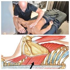 We specialize In Full Body Deep Tissue Massage With Swedish Gymnastics. Muscle Function, Scapula, Deep Tissue, Muscle Groups, Massage Therapy, Stretching, Muscles, Blade, Arm