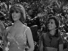 Gilligan's Island...Ginger & MaryAnn