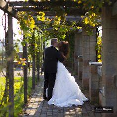 Gabriele & Esther  #wedding #fossano #albertogagnafotografo #wedding dress #romantic #langhe