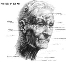 This is one of those things that they really didn't teach me in art school...how to show age progression of a face. Here is some how-to tips for drawing old people's faces and hands. I hope that it helps you.