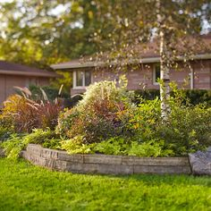 In addition to providing shade and ambience, trees complement the scale of a house. When placed in an island garden bed with other plants, a tree is integrated with the overall landscape.