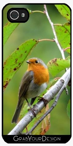 Thank you very much my buyer!  :)) Case for Iphone 5/5S - MM - Robin redbreast - by PINO
