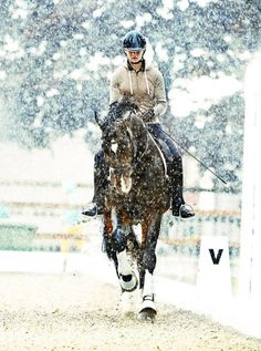 Dressage. We'll work in rain,snow,sleet, and hail but We'll never give up