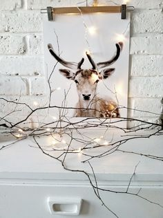 White living room corner with deer print and white fairy lights