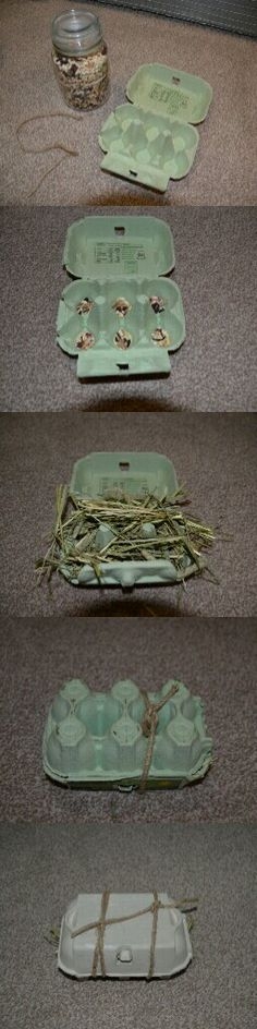 DIY treat parcel: Take your animals favourite treats, some hay, an cardboard egg carton and some sisal rope. Put the treat on into the egg box. Top with hay. Close the box, push in any hay and tie with sisal rope. Then watch your pet enjoy.
