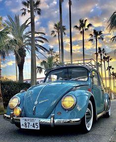 Vision of Beauty — @mmcdonald19 Car Volkswagen, Vw Cars, Vw Camper, Ford Gt, My Dream Car, Dream Cars, Volvo, Toyota, Vw Vintage