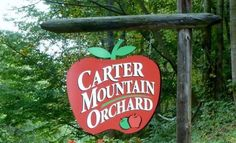 Carter Mountain Orchard, Charlottesville - VA