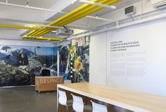 Beespace office design by Apartment One