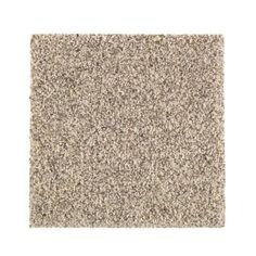 PetProof Carpet Sample - Maisie I - Color Foundation Texture 8 in. x 8 - The Home Depot PetProof Carpet Sample – Maisie I – Color Foundation Texture 8 in. x 8 in. Shaw Carpet, Wall Carpet, Diy Carpet, Bedroom Carpet, Carpet Flooring, Frieze Carpet, Plush Carpet, Brown Carpet, Beige Carpet