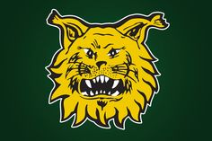 Finnish SM liiga League Ilves - Google Search
