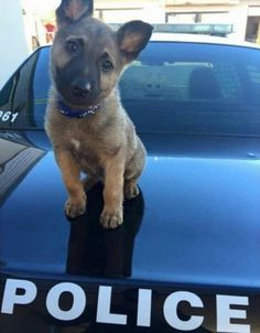 His first day on the job